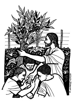 Evangelio segúnn Marcos (4,26-34):En aquel tiempo, Jesús dijo a la multitud: «El Reino de Dios se parece a lo que sucede cuando un hombre siembra la semilla en la tierra: que pasan las noches y los días, y sin que él sepa cómo, la semilla germina y crece; y la tierra, por sí sola, va produciendo el fruto: primero los tallos, luego las espigas y después los granos en las espigas. Y cuando ya están maduros los granos, el hombre echa mano de la hoz, pues ha llegado el tiempo de la cosecha.»Les dijo también: «¿Con qué compararemos el Reino de Dios? ¿Con qué parábola lo podremos representar? Es como una semilla de mostaza que, cuando se siembra, es la más pequeña de las semillas; pero una vez sembrada, crece y se convierte en el mayor de los arbustos y echa ramas tan grandes, que los pájaros pueden anidar a su sombra.»Y con otras muchas parábolas semejantes les estuvo exponiendo su mensaje, de acuerdo con lo que ellos podían entender. Y no les hablaba sino en parábolas; pero a sus discípulos les explicaba todo en privado.Palabra del Seño, del domingo, 17 de junio de 2018